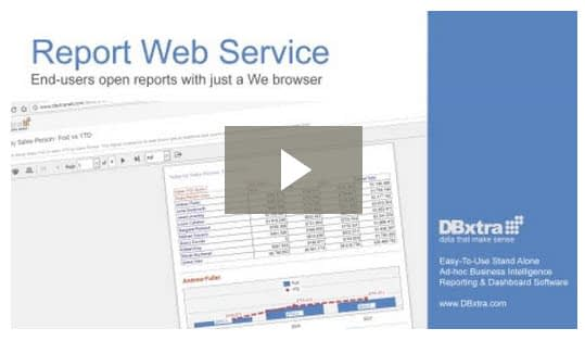Report Web Service Video